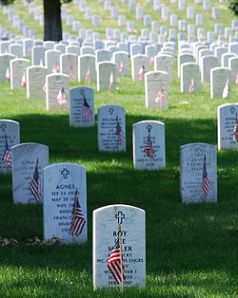 Arlington Gravestones with flags
