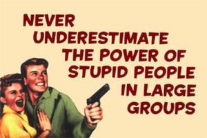 never-underestimate-28015-stupidpeople