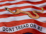 Don't Tread on Me Red