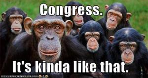 Congress Monkeys