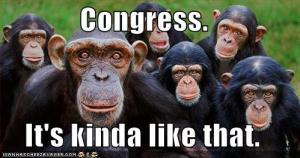 Congress Monkeys