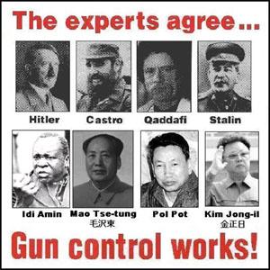 Experts Agree Gun Control