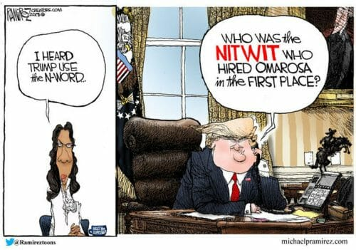Omarosa-Offended-that-President-Trump-May-Have-Used-the-N-Word-1-500x351